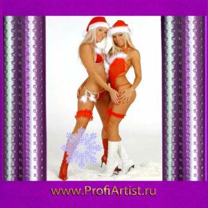 Шоу женских боёв Снегурочек в Москве без посредников