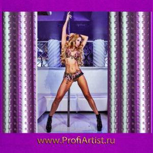 Женский стриптиз - программа на 23 февраля
